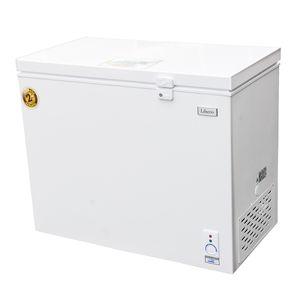 Libero-Congeladora-Dual-300-Lt-wong-558972_1