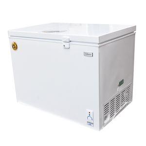 Libero-Congeladora-Dual-200-Lt-wong-558971_1